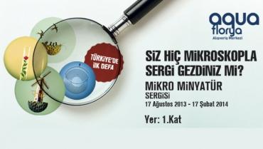 Miniature Exhibition of Ukrainian Artist Mykola Syadristy
